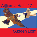 William J Hall, Singer, Songwriter - 17 - Sudden Light